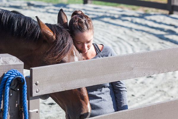 RingLeader Equine Coaching